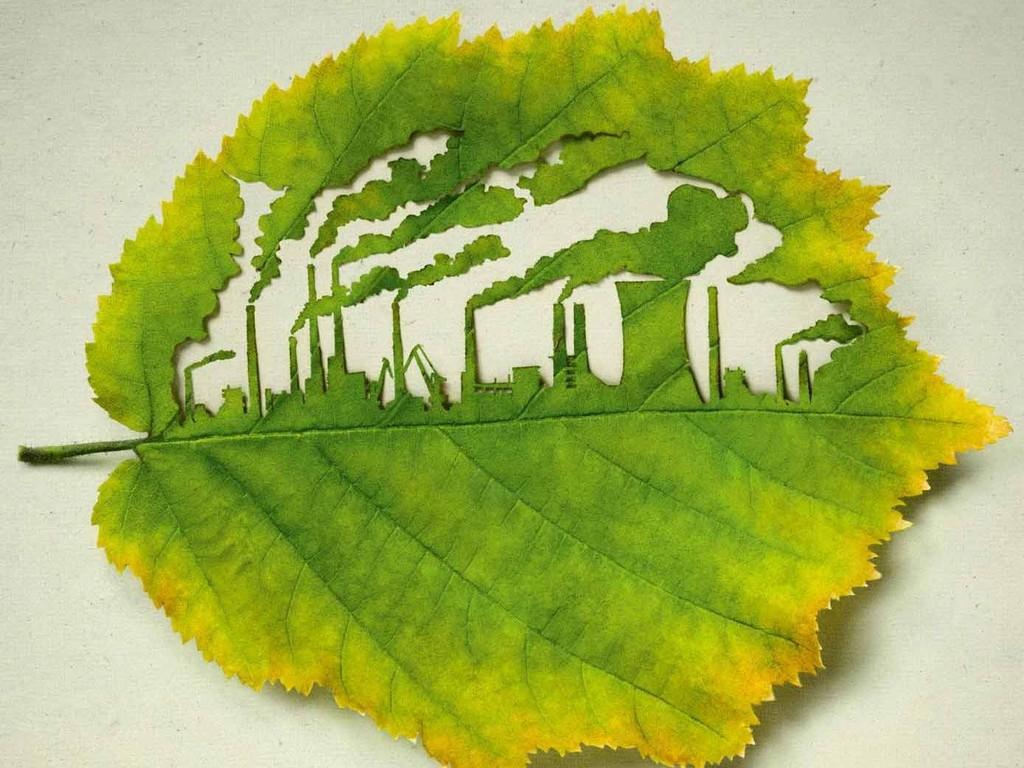 план природоохранные мероприятия на предприятии