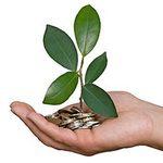 Платежи за негативное воздействие на окружающую среду в Екатеринбурге