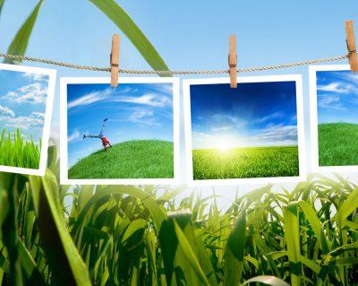 Приглашаем принять участие в экотренинге 13-14 декабря 2012 года