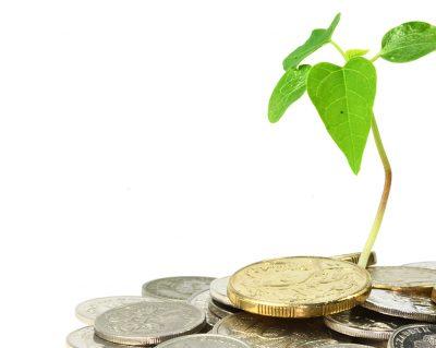 Экология и бизнес: штрафы, основные нарушения