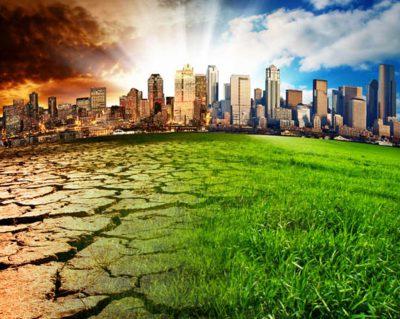 Разработан порядок установления нормативов качества окружающей среды