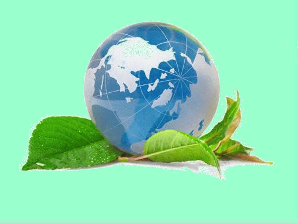 Международная конференция по органическим отходам