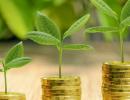 Экологические платежи могут объединить